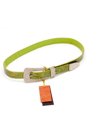 Belt (30mm)(P8C934AN)